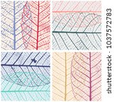 set of patterns with skeleton... | Shutterstock .eps vector #1037572783