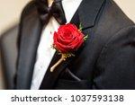 groom on wedding day  getting...   Shutterstock . vector #1037593138