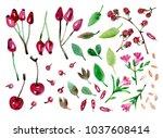 watercolor retro style... | Shutterstock . vector #1037608414