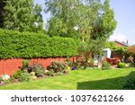a garden lawn  bordered with... | Shutterstock . vector #1037621266