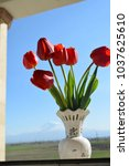 natural background  red tulips | Shutterstock . vector #1037625610