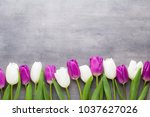 multicolored spring flowers ... | Shutterstock . vector #1037627026