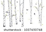 birch tree with deer and birds... | Shutterstock . vector #1037650768
