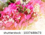 bouquet with pink flowers.... | Shutterstock . vector #1037688673