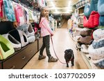 Stock photo little girl chooses house for puppy in pet shop 1037702059