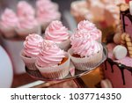 pink cupcakes on the plate on... | Shutterstock . vector #1037714350