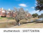 typical riverside apartment... | Shutterstock . vector #1037726506