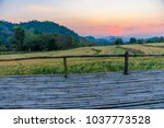 terrace on barley field in... | Shutterstock . vector #1037773528