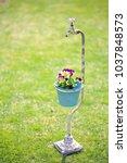 garden ornament  flower  faucet | Shutterstock . vector #1037848573