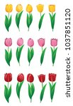 colorful tulips set | Shutterstock .eps vector #1037851120