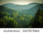 beautiful view of forests and... | Shutterstock . vector #1037875864