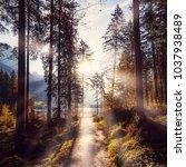 wonderful natural background.... | Shutterstock . vector #1037938489
