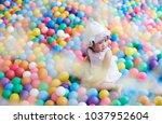 asian little girl play with...   Shutterstock . vector #1037952604