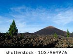 volcano el chinyero during the... | Shutterstock . vector #1037964976