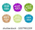 set of hand drawn vector logo... | Shutterstock .eps vector #1037981209