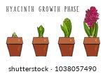 home garden growing indoor...   Shutterstock .eps vector #1038057490