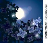 flower lilac   beautiful night...