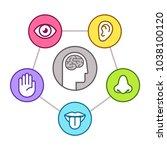 human perception infographic... | Shutterstock . vector #1038100120