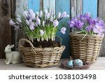 Easter Composition With Fresh...