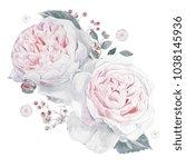 watercolor pink roses...   Shutterstock . vector #1038145936