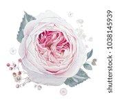 watercolor pink roses...   Shutterstock . vector #1038145939
