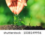 woman hand watering to young... | Shutterstock . vector #1038149956