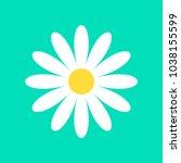 daisy chamomile vector icon... | Shutterstock .eps vector #1038155599