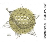 cocoa beans vector illustration.... | Shutterstock .eps vector #1038197659