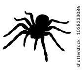 Vector Image Of Spider...