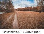 autumn beautiful landscape ...   Shutterstock . vector #1038241054