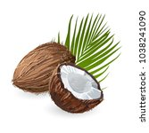 coconut with leaf. natural... | Shutterstock .eps vector #1038241090