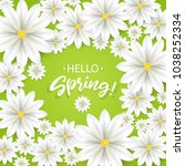 hello spring.hand lettering... | Shutterstock .eps vector #1038252334