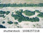 aerial view over letea forest... | Shutterstock . vector #1038257218