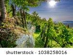 vineyards nearby crnomelj in... | Shutterstock . vector #1038258016