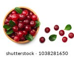 cranberry isolated on white....   Shutterstock . vector #1038281650