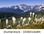 waterton national park  canada | Shutterstock . vector #1038316684