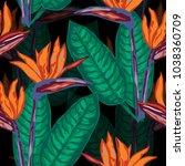 elegant seamless pattern with... | Shutterstock .eps vector #1038360709