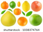 isolated citrus fruits... | Shutterstock . vector #1038374764