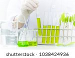 plant sciences in lab | Shutterstock . vector #1038424936