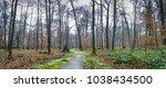 natural landscape   park with... | Shutterstock . vector #1038434500