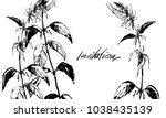 nifty gentle hand drawn... | Shutterstock .eps vector #1038435139