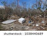 damage from hurricane irma in... | Shutterstock . vector #1038440689