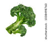 broccoli on white background.... | Shutterstock . vector #1038498760