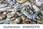 Black Tiger Shrimp For Sale I...