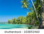 coconut coast serenity shore | Shutterstock . vector #103852460