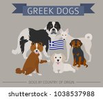 dogs by country of origin.... | Shutterstock .eps vector #1038537988