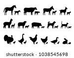 livestock  farm animals and... | Shutterstock .eps vector #1038545698