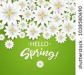 hello spring.hand lettering... | Shutterstock .eps vector #1038580690
