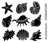 seashells  starfish black... | Shutterstock .eps vector #1038660289