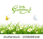 natural background with grass ... | Shutterstock .eps vector #1038688168